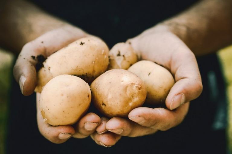 WVDA reimbursing agricultural, handling practice audits