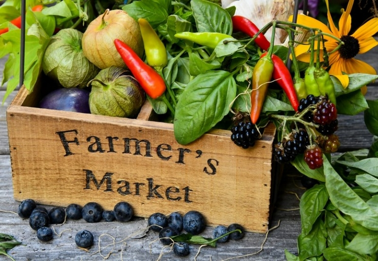 WVU offers tips for a safe, healthy farmers' market season