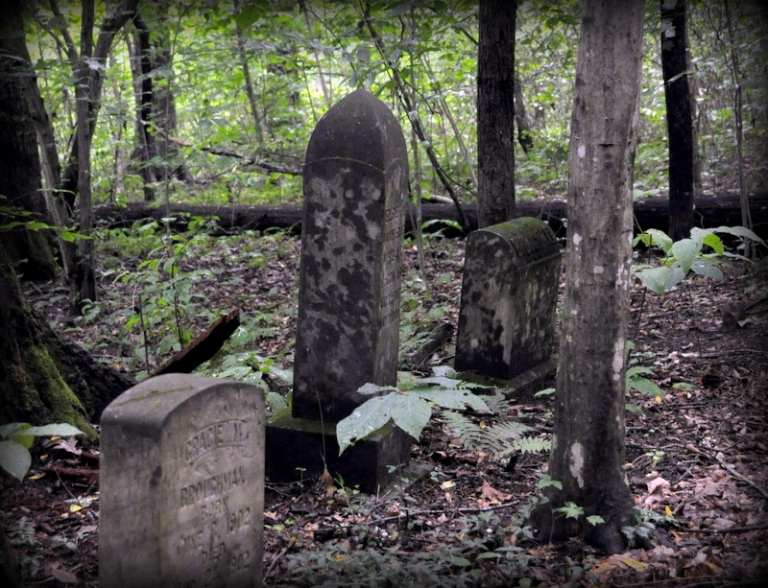 Epidemic victims may rest on New River's Island of the Dead