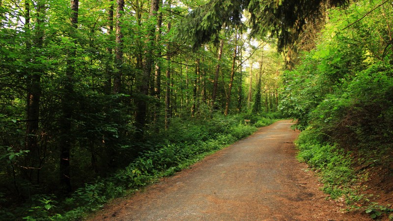 The new Elk River Trail State Park is attracting business interests.