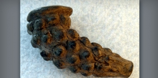 Iroquoian-style pipe discovered at the Marmet archaeological site (46-KA-9). (Provided by Darla Spencer)
