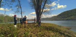 Students plant trees at the head of Wheeling Island in Wheeling, West Virginia. (Photo courtesy West Liberty University)