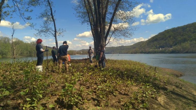 West Liberty University students planting trees in Ohio County