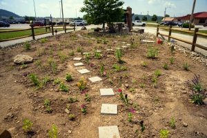 A newly unveiled pollinator garden will enhance an entrance to the Toyota Plant at Buffalo, West Virginia.
