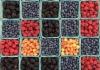 Berries at a farmer's market
