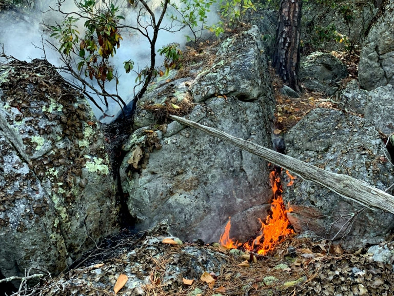 W.Va. Division of Forestry subdues fire in Pendleton County